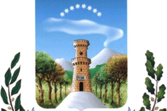 Avviso per la fornitura dei libri di testo per gli alunni frequentanti le scuole secondarie di Torre del Greco (cedole librarie) per l'a. s. 2021/2022. – Comune di Torre del Greco